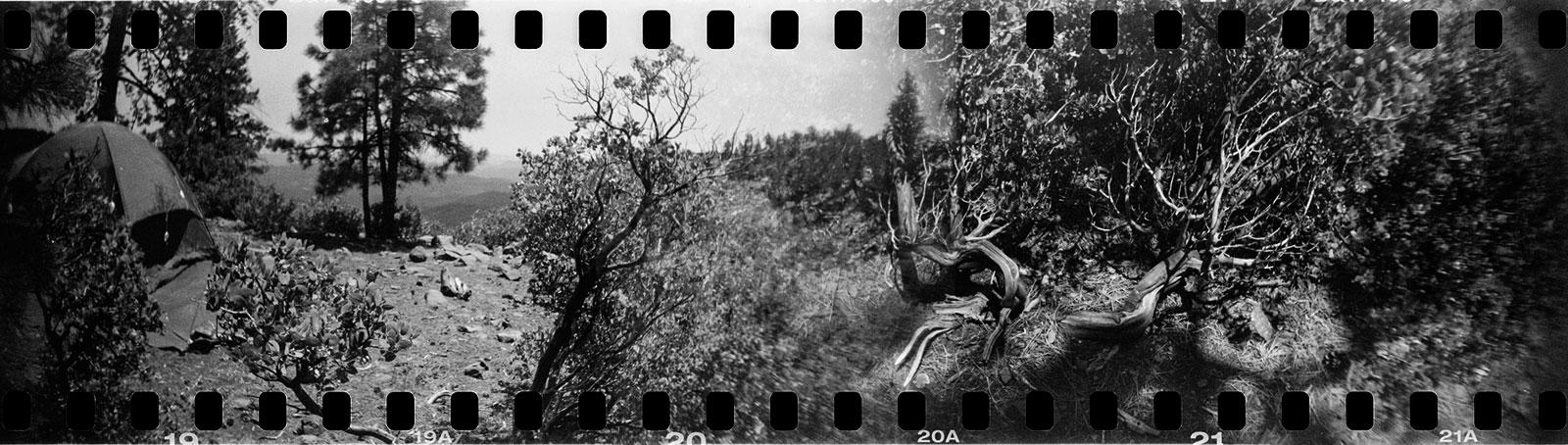 Kevin Dooley maakte deze lomography-foto met een analoge camera die ook de 'sprockets' van de film belichtte.