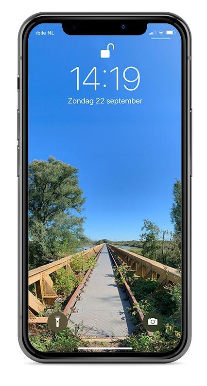 Toegangsscherm iPhone met verticaal panoarma