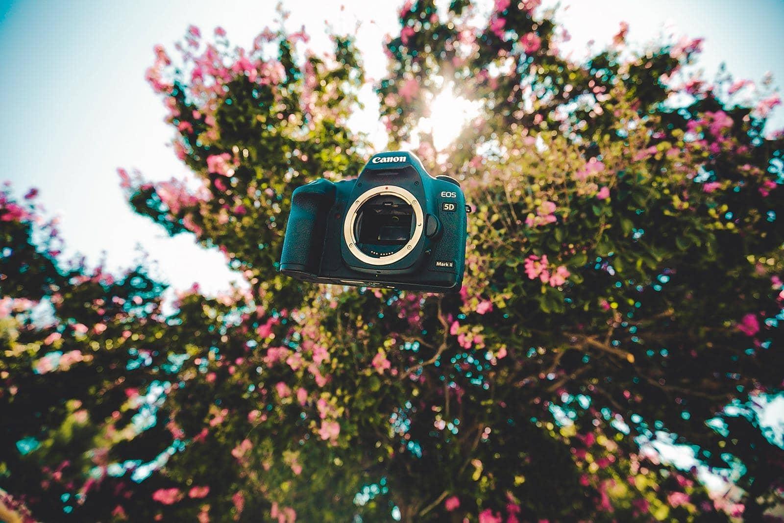 Spiegelreflex camera of smartphone?