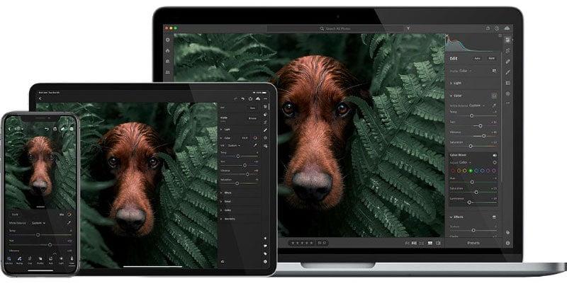 Adobe Lightroom voor iPhone, iPad en desktop: inclusief online foto-opslag in de cloud