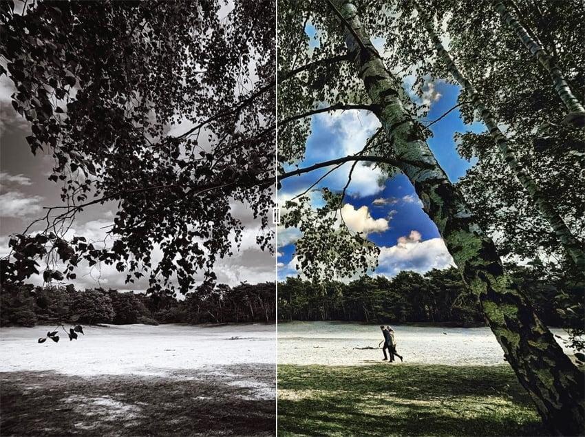 Zwart-wit foto kleuraccent geven met ColoriseSG