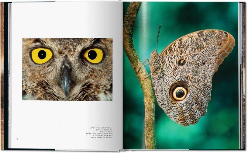 Fotoboek Oog in oog van Frans Lanting