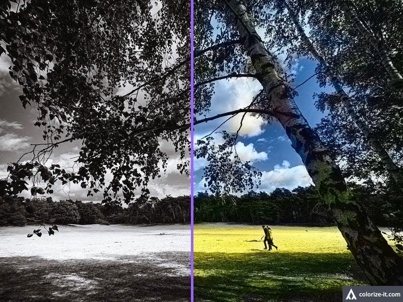 Zwart-wit foto inkleuren met Algorithmia