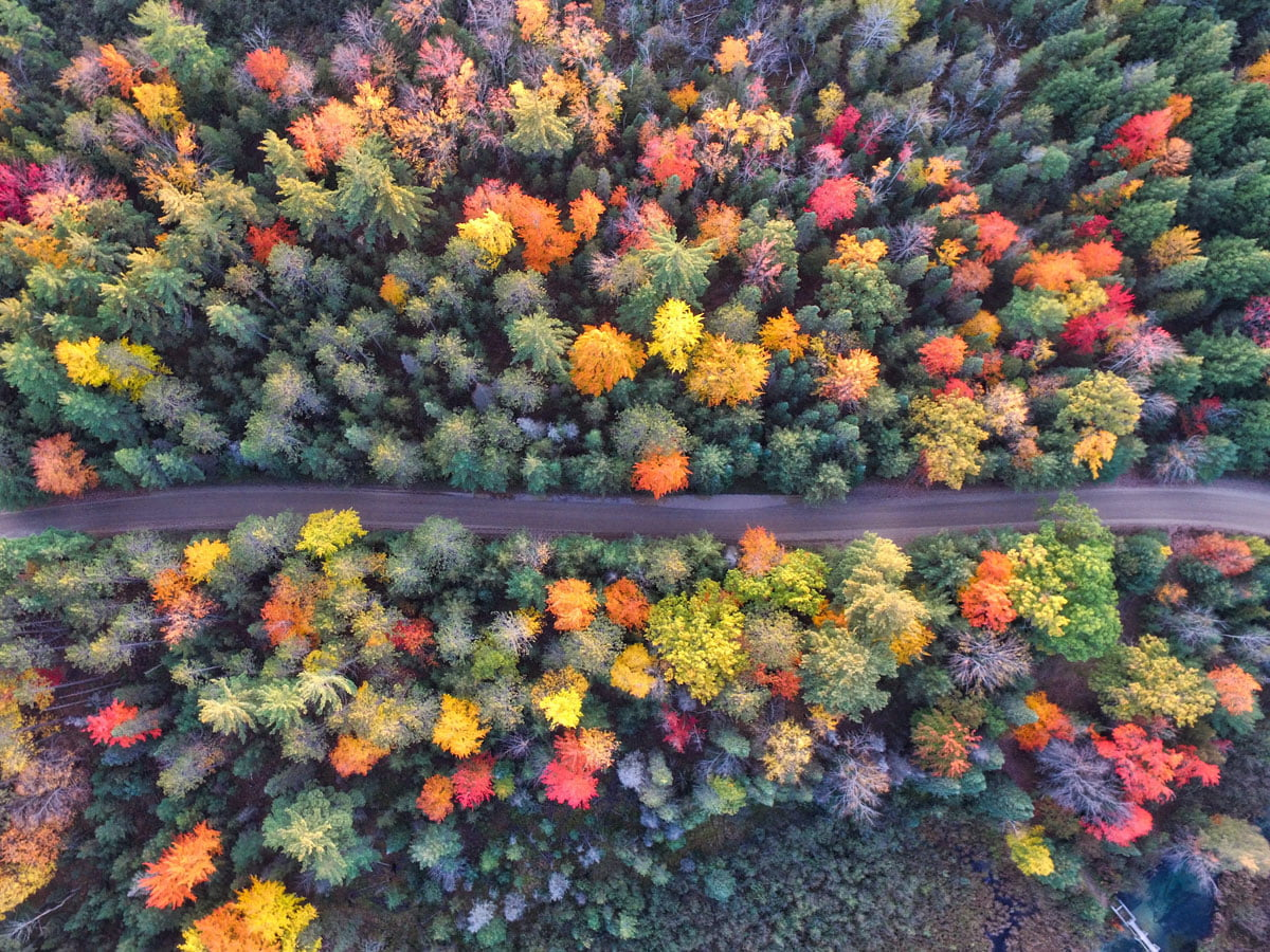 Beeld vanuit drone